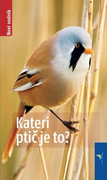 Kateri ptic je to-NV
