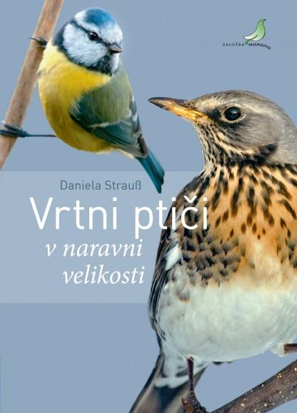 vrtni ptici