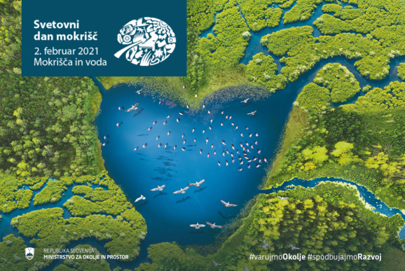 Svetovni dan mokrišč 2021 - Mokrišča in voda